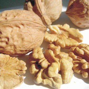 walnuts - Have You Recommended Walnuts Today?