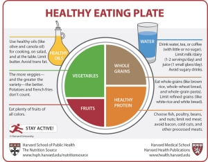 healthy eating plate 700 - What do you think of Harvard's new Healthy Eating Plate?