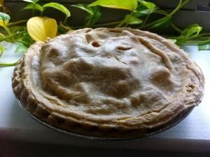 img 3188 - Mom's Fool-Proof Apple Pie