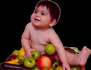 homebaby - Purely Organic Baby Foods