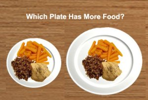 whichplate - Does (plate) size matter?