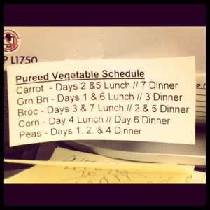 img 0191 - Vegetable Schedule