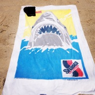 Best towel ever
